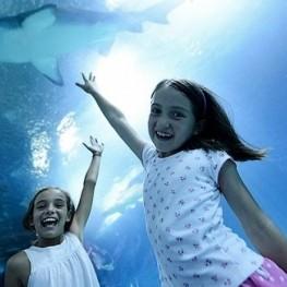 Puente de Diciembre en Valencia con niños