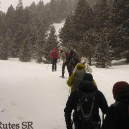 Raquetes de neu Port del Comte