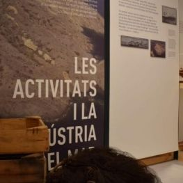 Conferència de Carolina Martí