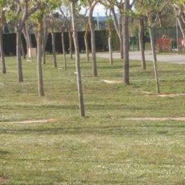 Zona Camper