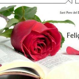 Sant Jordi & Spa