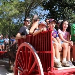 Promoció setmana santa: ruta en carro i cavall
