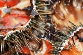 Menú a la Garoinada de Palafrugell