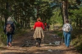 Natura i descoberta: majors de 60 anys