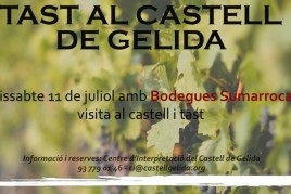 Tasting at Gelida Castle with Sumarroca Wineries