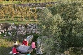 Randonnée et dégustation de vins