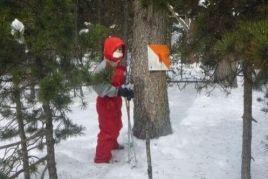 Dia de neu amb Família (Raquetes de neu + Iglús)