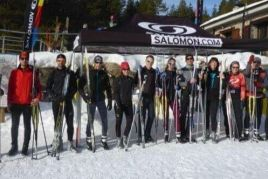 Nordic skiing in group