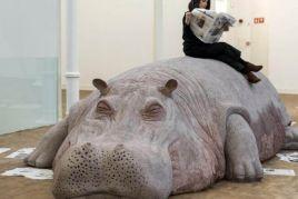 Un hipopótamo en el museo!