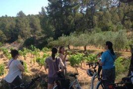Excursió amb bicicleta elèctrica