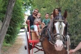 Ruta en carro per a tota la família
