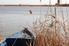 Accommodation plus experience in the Ebro delta