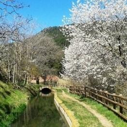 4 itinéraires le long de la rivière Llobregat