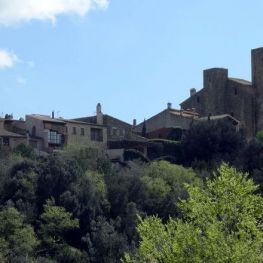The Medieval architecture of the Empordà