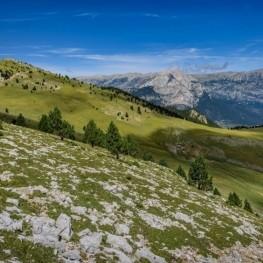 La Gallina Pelada des de la Font Freda (Serra d'Ensija)