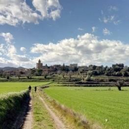 Route au pied des Gavarres à Madremanya