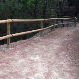 Ruta de la Tourdera: De la Batllòria a Gualba