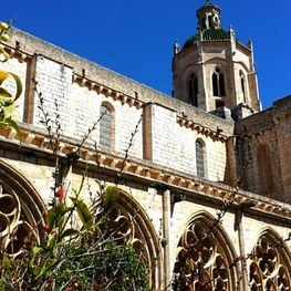 Cistercian Route II: Culture, fauna and flora around Santes…