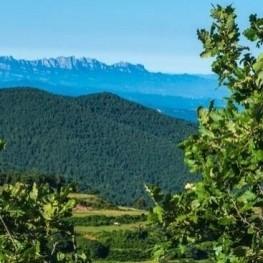 Parcourez le domaine du terroir à L'Estany
